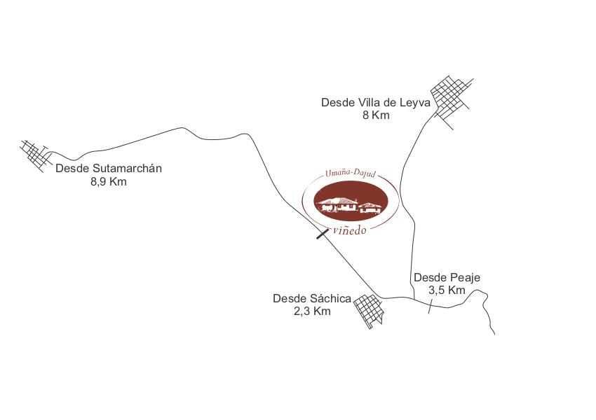El viñedo está localizado a menos de 8 kilómetros de la plaza central de Villa de Leyva.