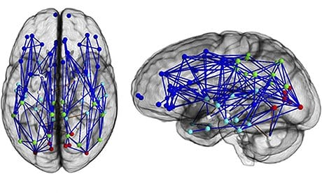 Men-women-brains-008.jpg