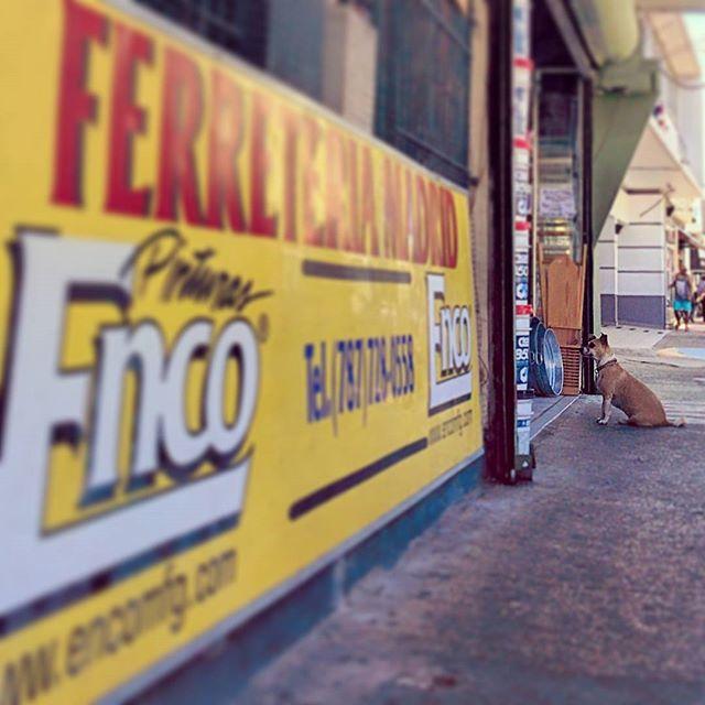 Morning walk, Ferretaria Madrid. #calleloiza #santurce #sanjuan #puertorico
