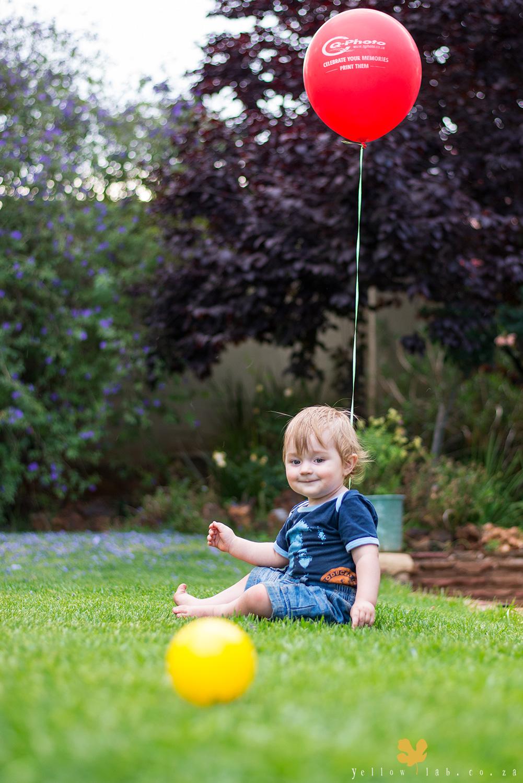 yellow-lab-balloon1.jpg
