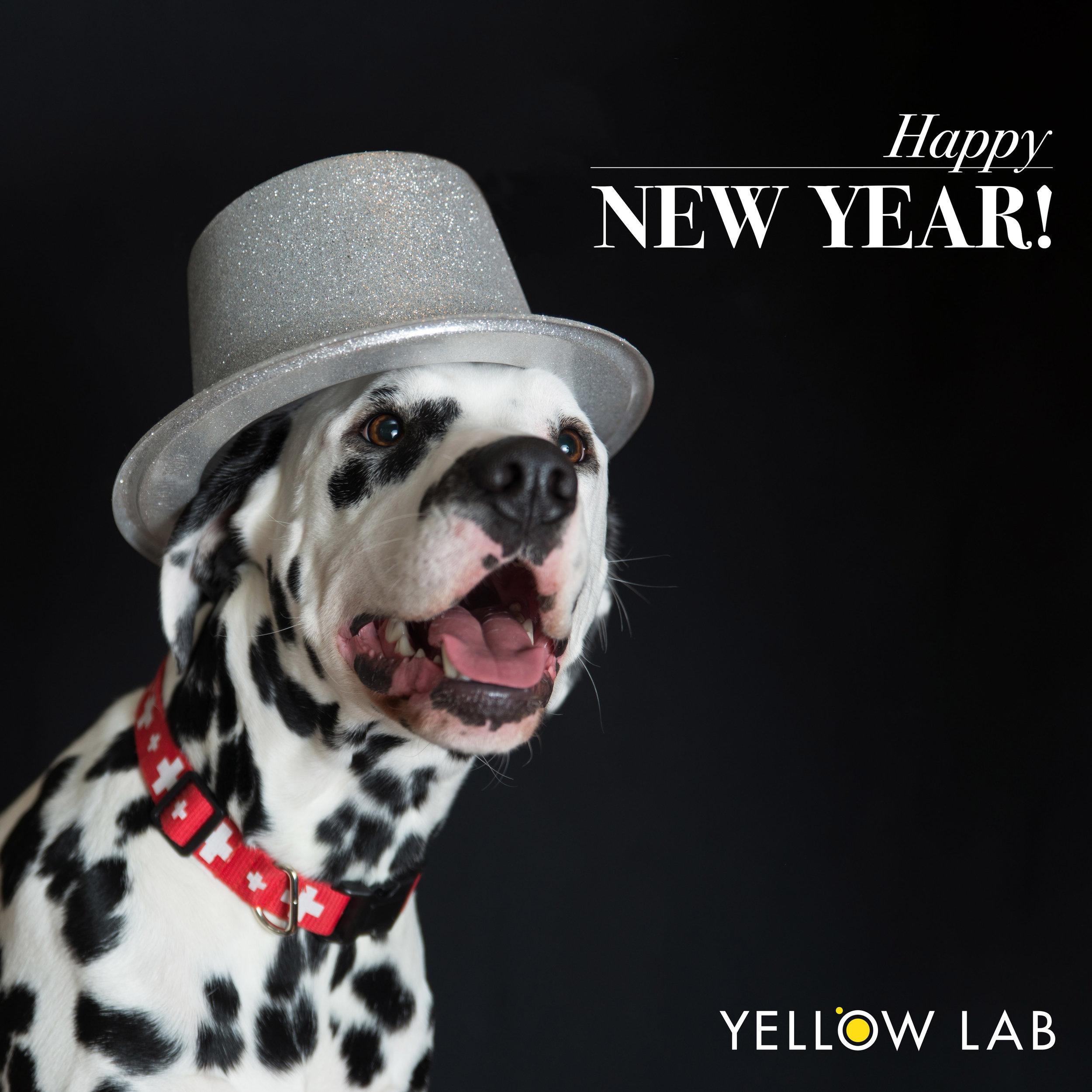happy new year enzo.jpg