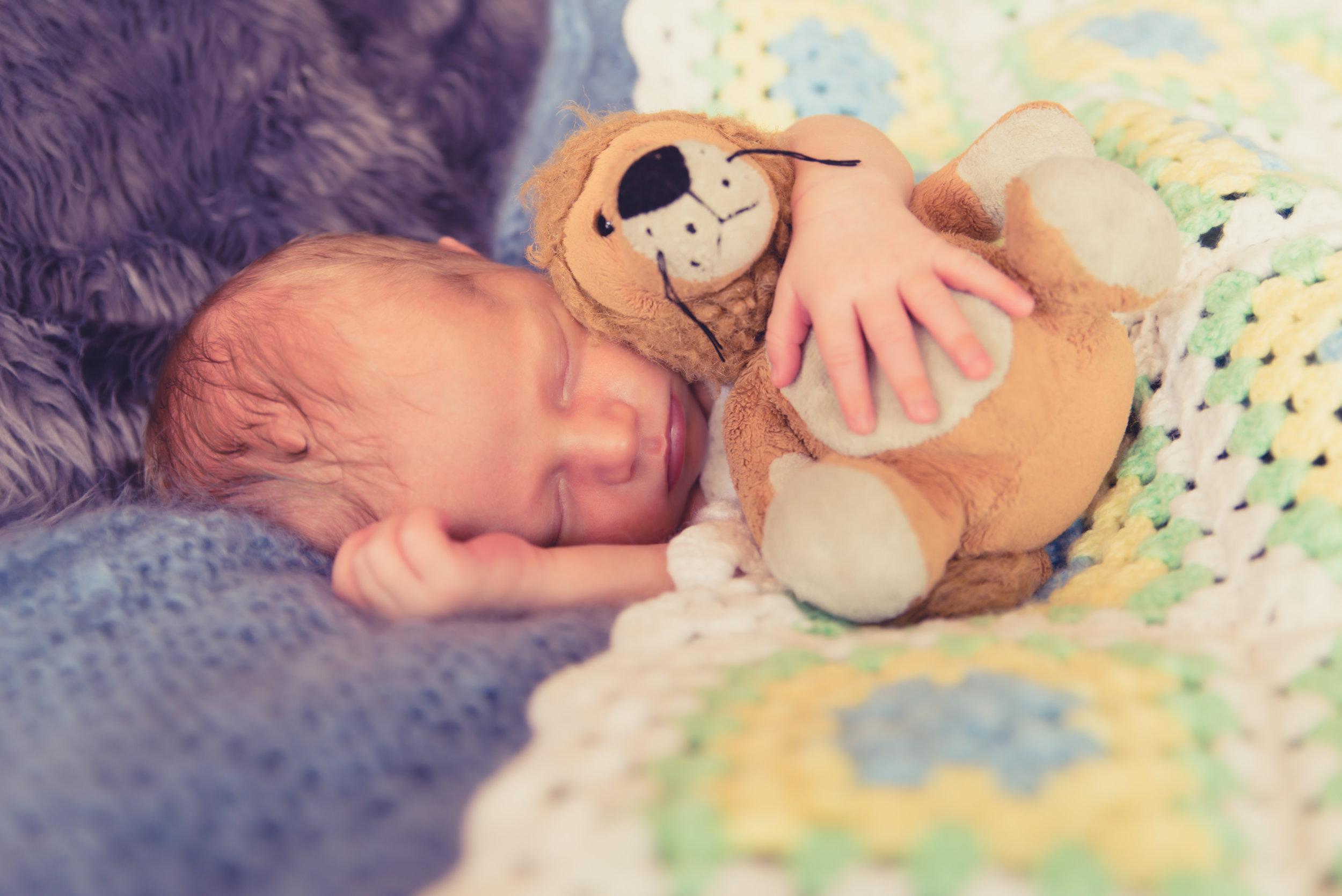 baby photographer auckland