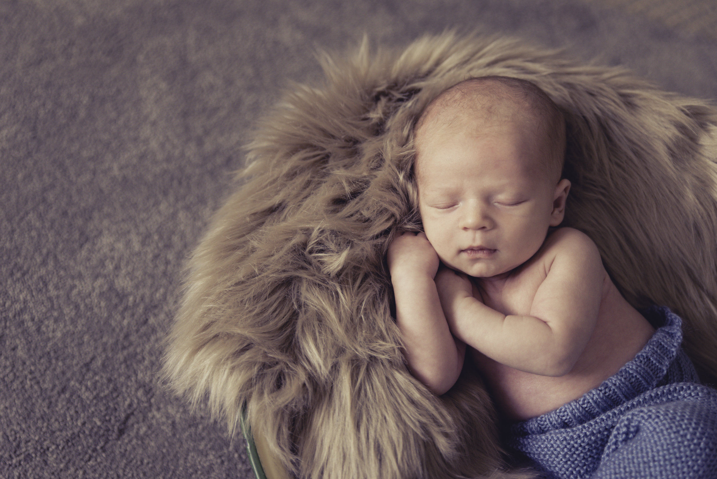 baby photography in auckland