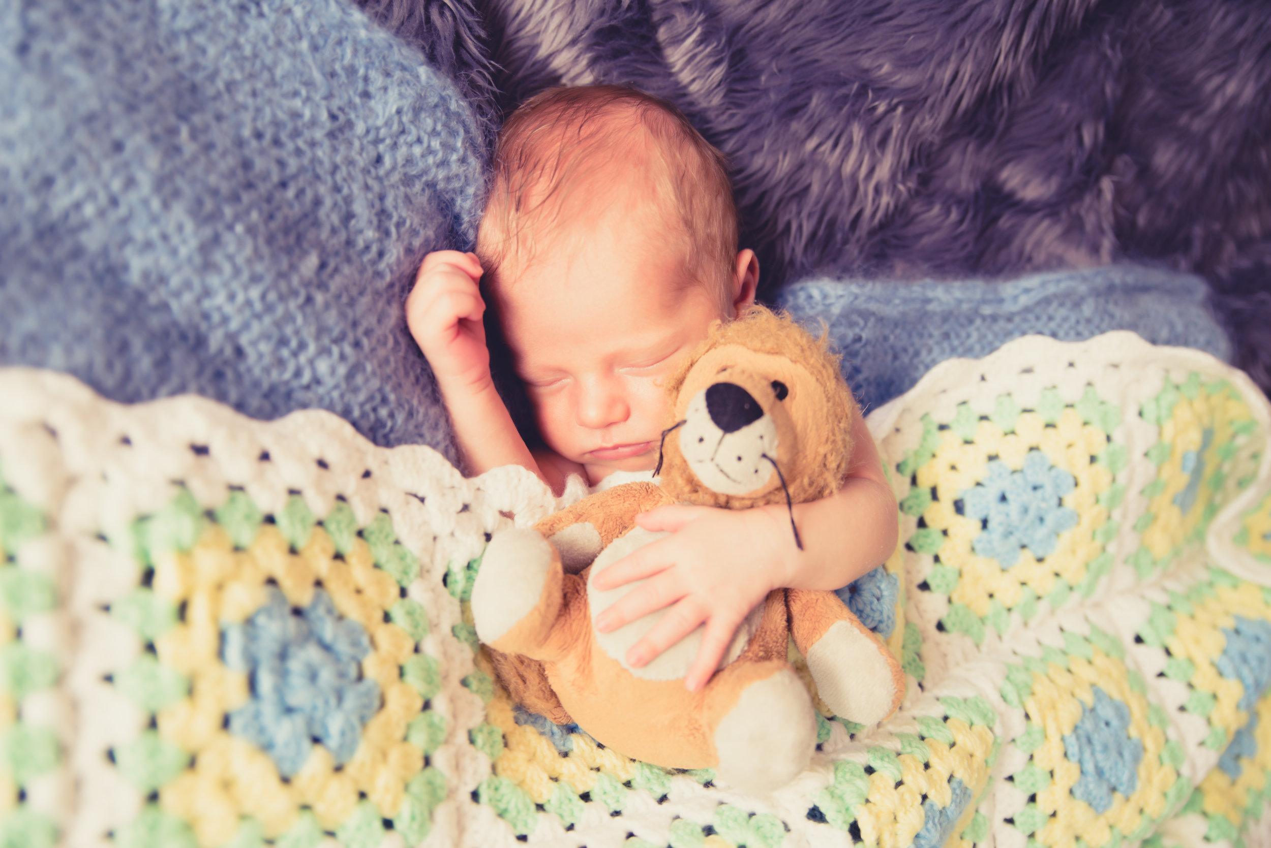 baby photo shoot auckland