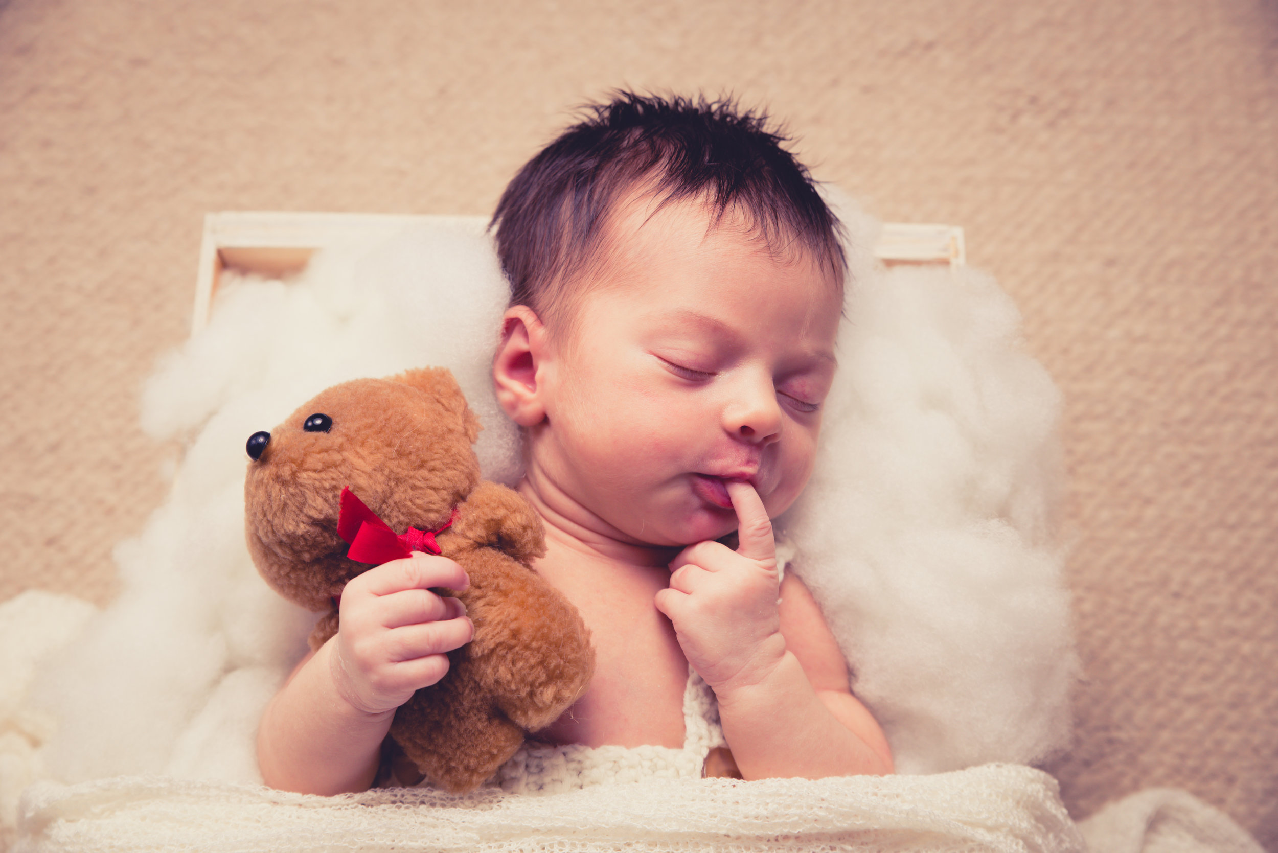 baby photography auckland