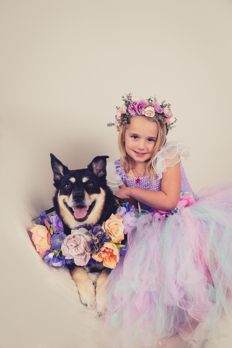 Lyka the Australian cattle dog x - See more photographs from Stacey's photoshoot with her dog, her mum and daughter. The cutest gran and girl and 3 generations photographs.