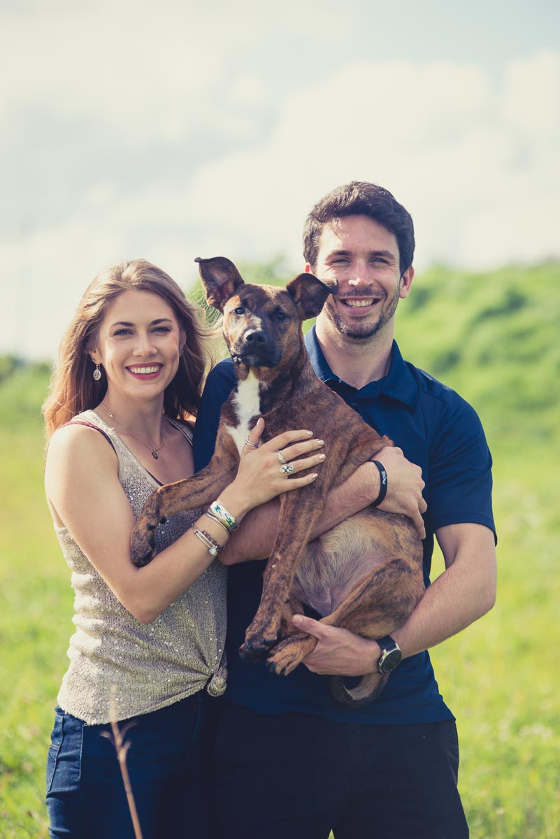 family with dog photographer near auckland