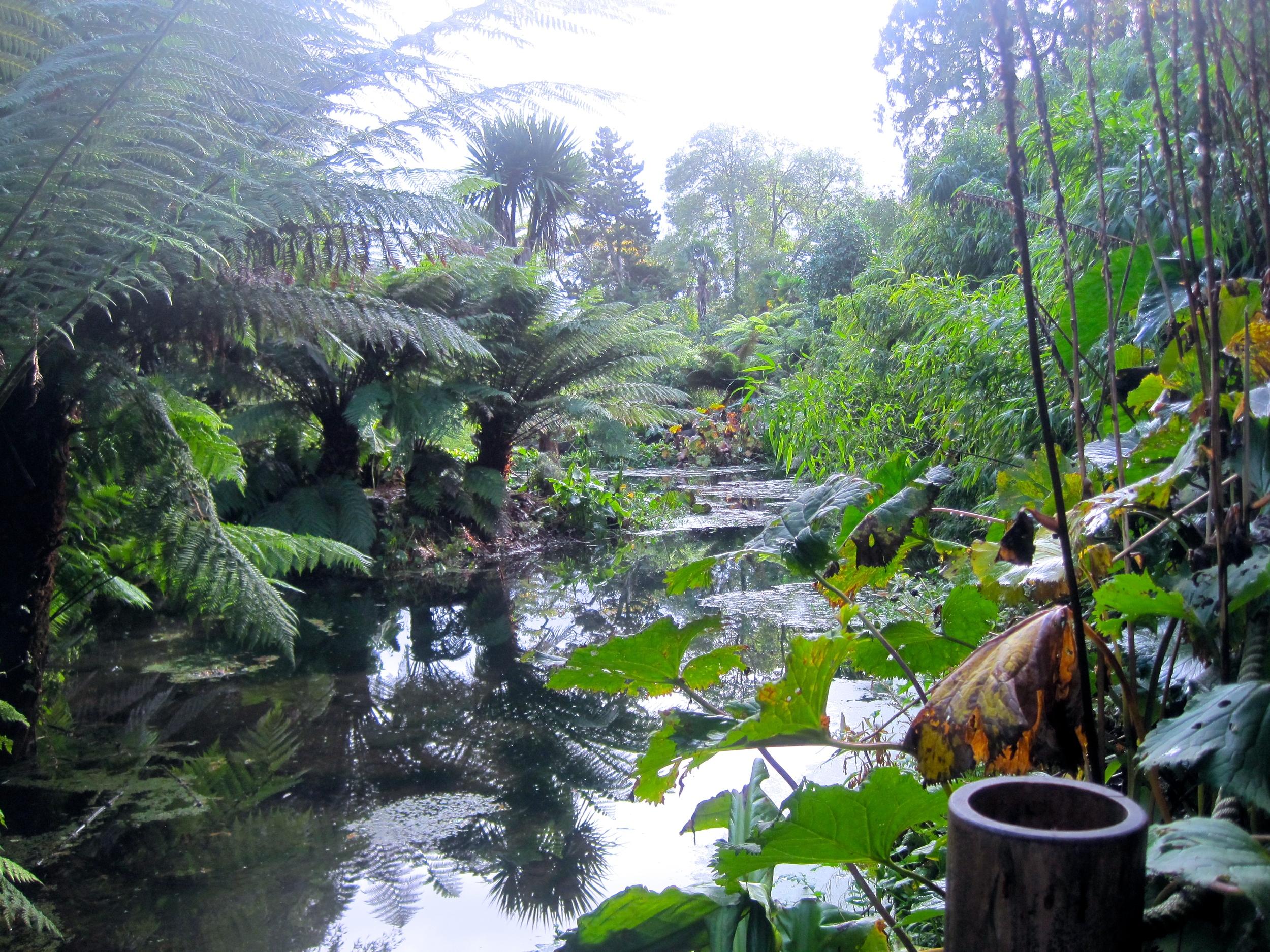 lost_garden_of_heligan_cornwall