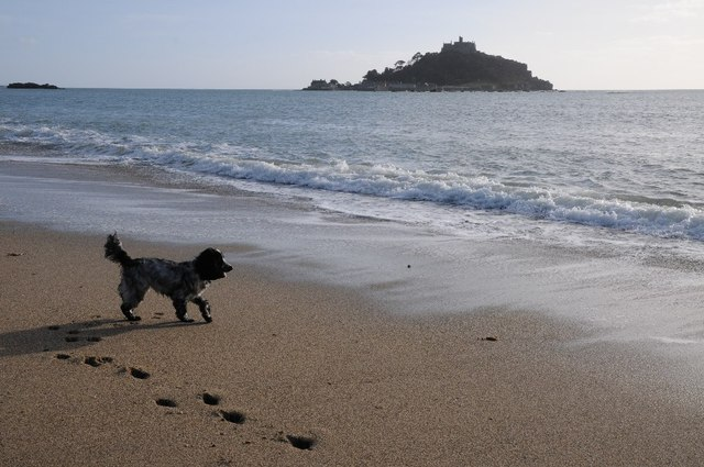 Dog Friendly Beaches - Marazion is surrounded by a host of dog-friendly beaches and of course the incredible South West Coast Path. You can enjoy the sun, sand warm waters and so can your dog!Whilst Marazion Beach, in front of St Michael's Mount is not dog friendly year round April - September), the beach to the east of the causeway and the Steps Beach beach (access down Leys Lane beside the Copper Spoon) is dog friendly all year round