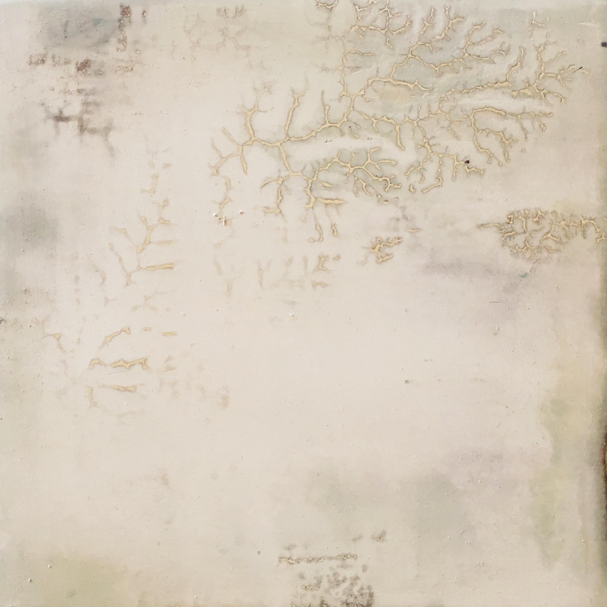 white fractal     2018