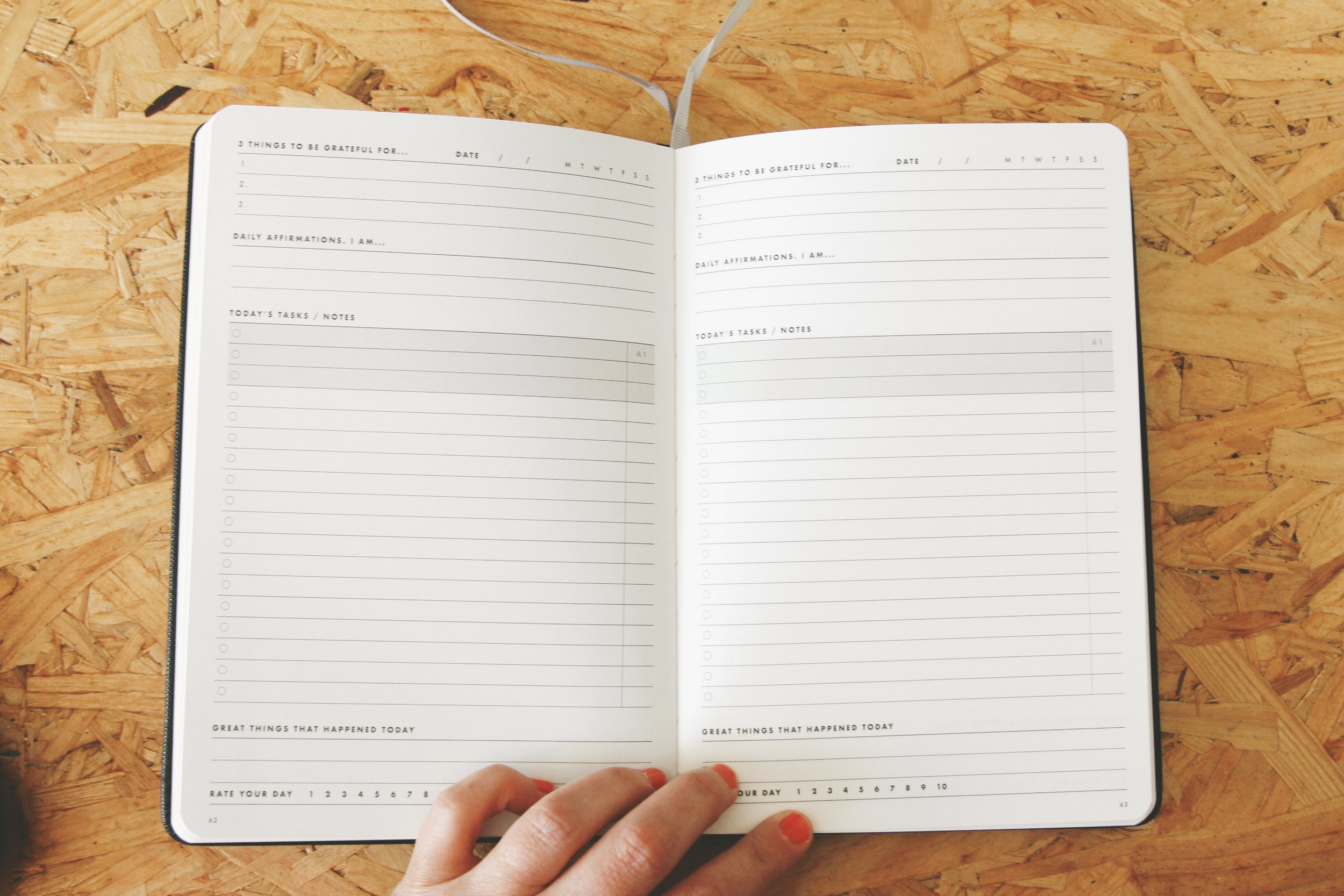 celine navarro daily goal setter planner 11.JPG