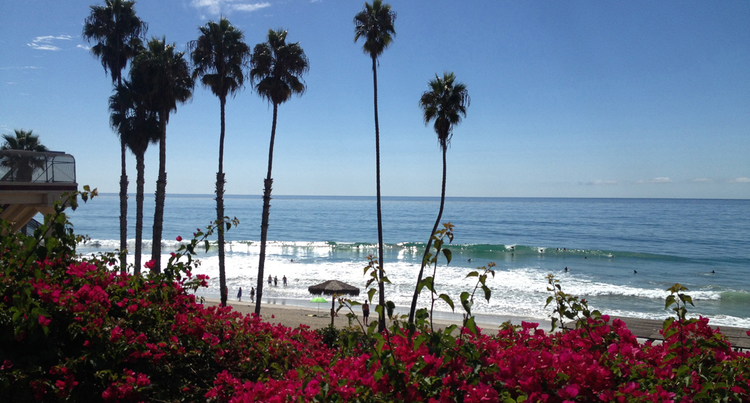 imagine surfing at famous T-Street Beach in beautiful san clemente