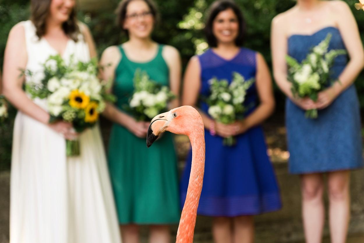 dallas-zoo-wedding_0239.jpg