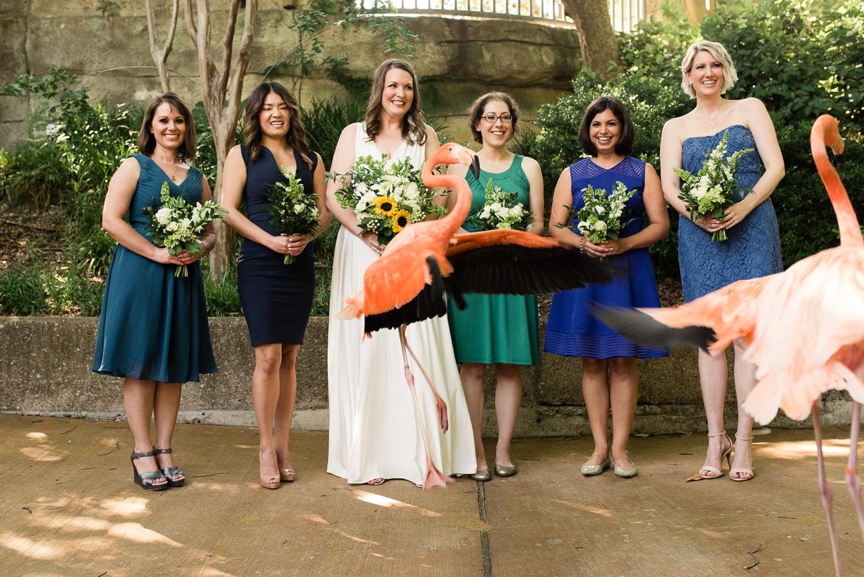 dallas-zoo-wedding_0238.jpg