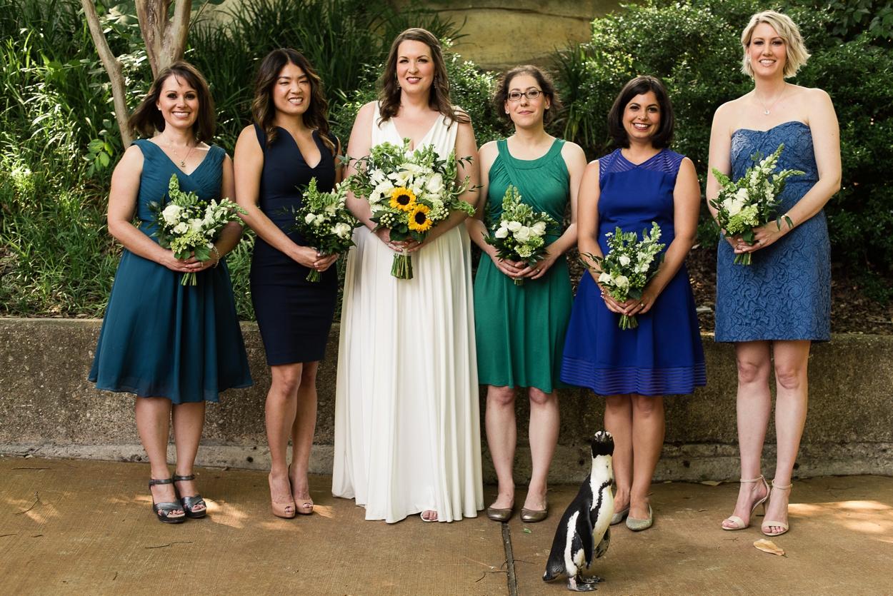 dallas-zoo-wedding_0240.jpg