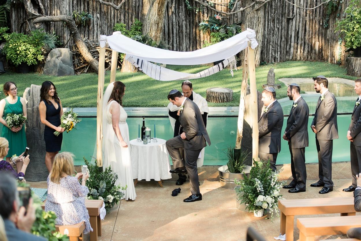 dallas-zoo-wedding_0255.jpg