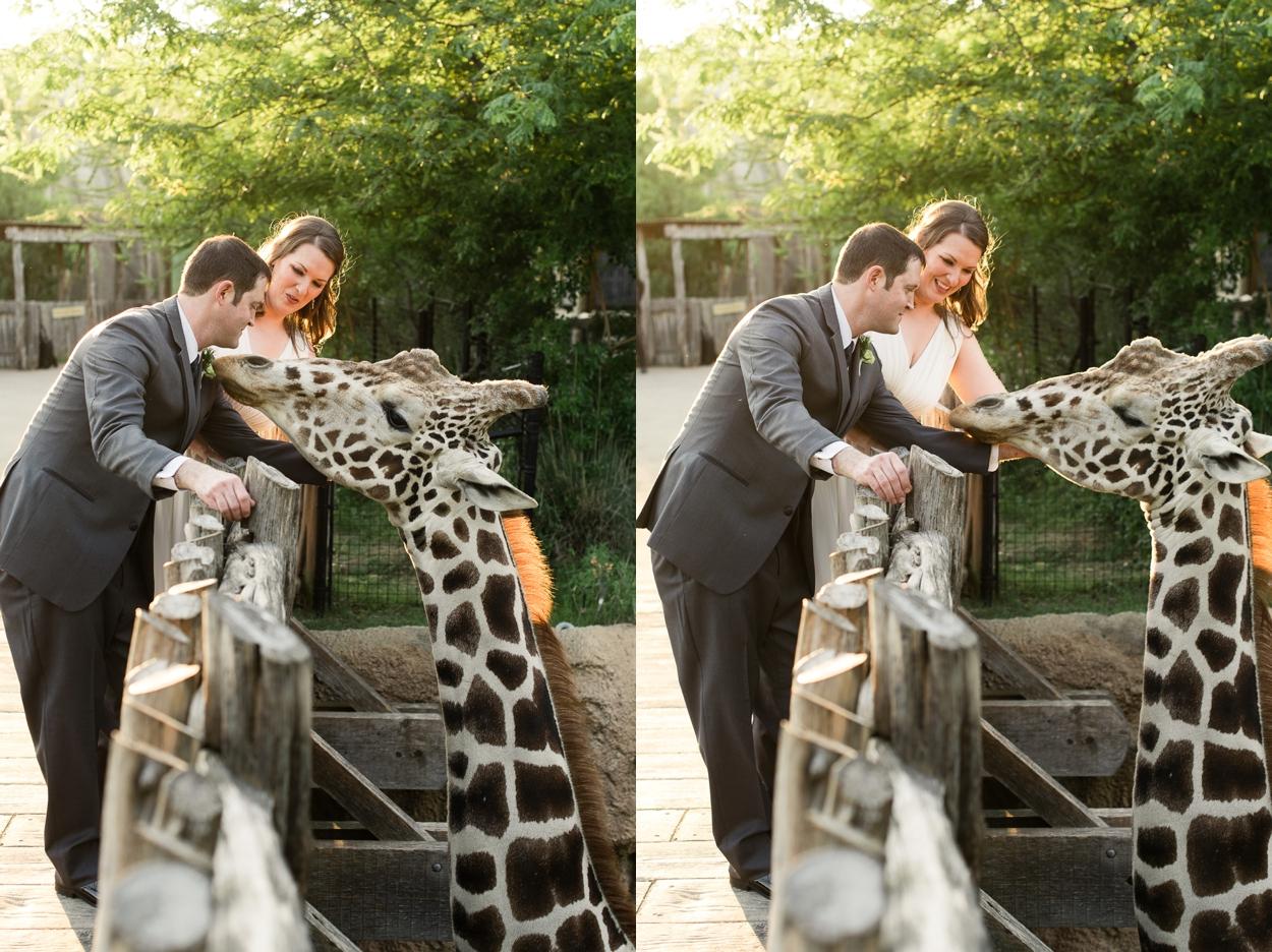 dallas-zoo-wedding_0269.jpg