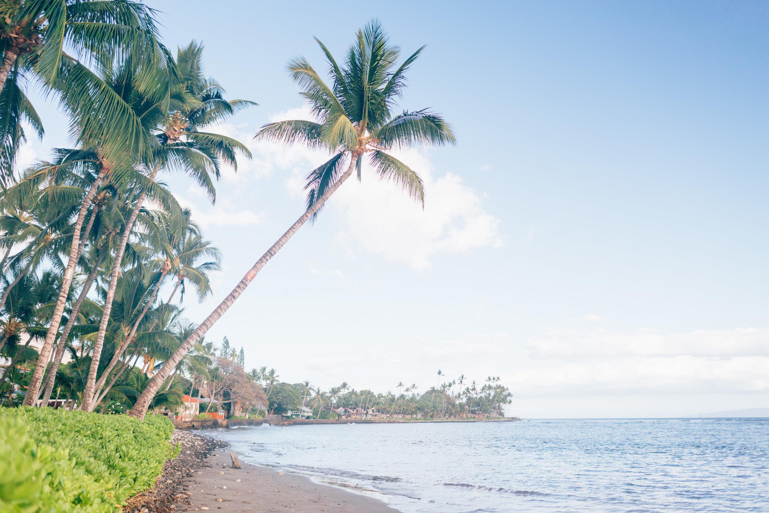 2015 Hawaii Bridal Editorial-23.JPG