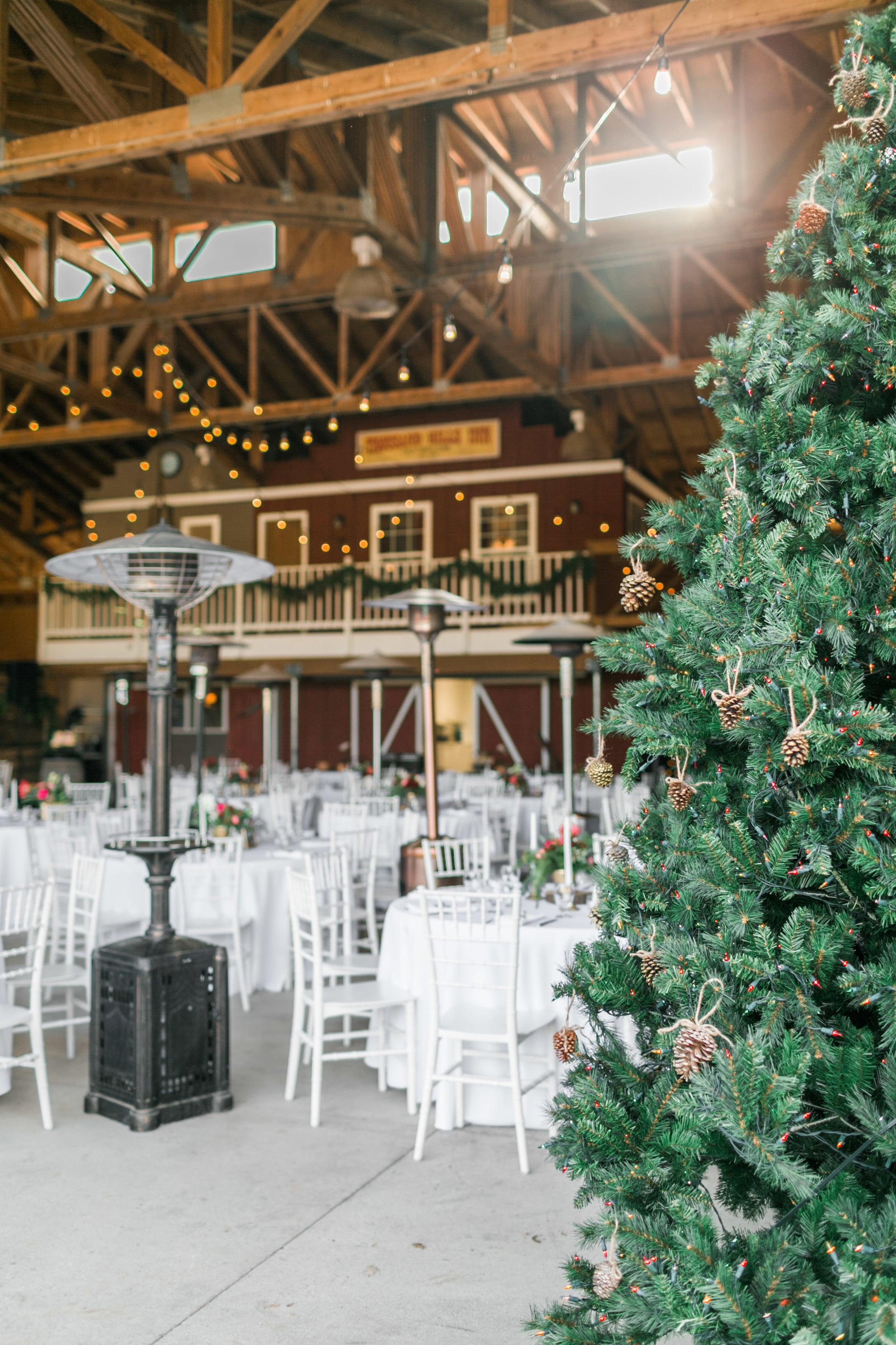 Natalie_Schutt_Photography_Winter_Wedding_San_Luis_Obispo-71.jpg