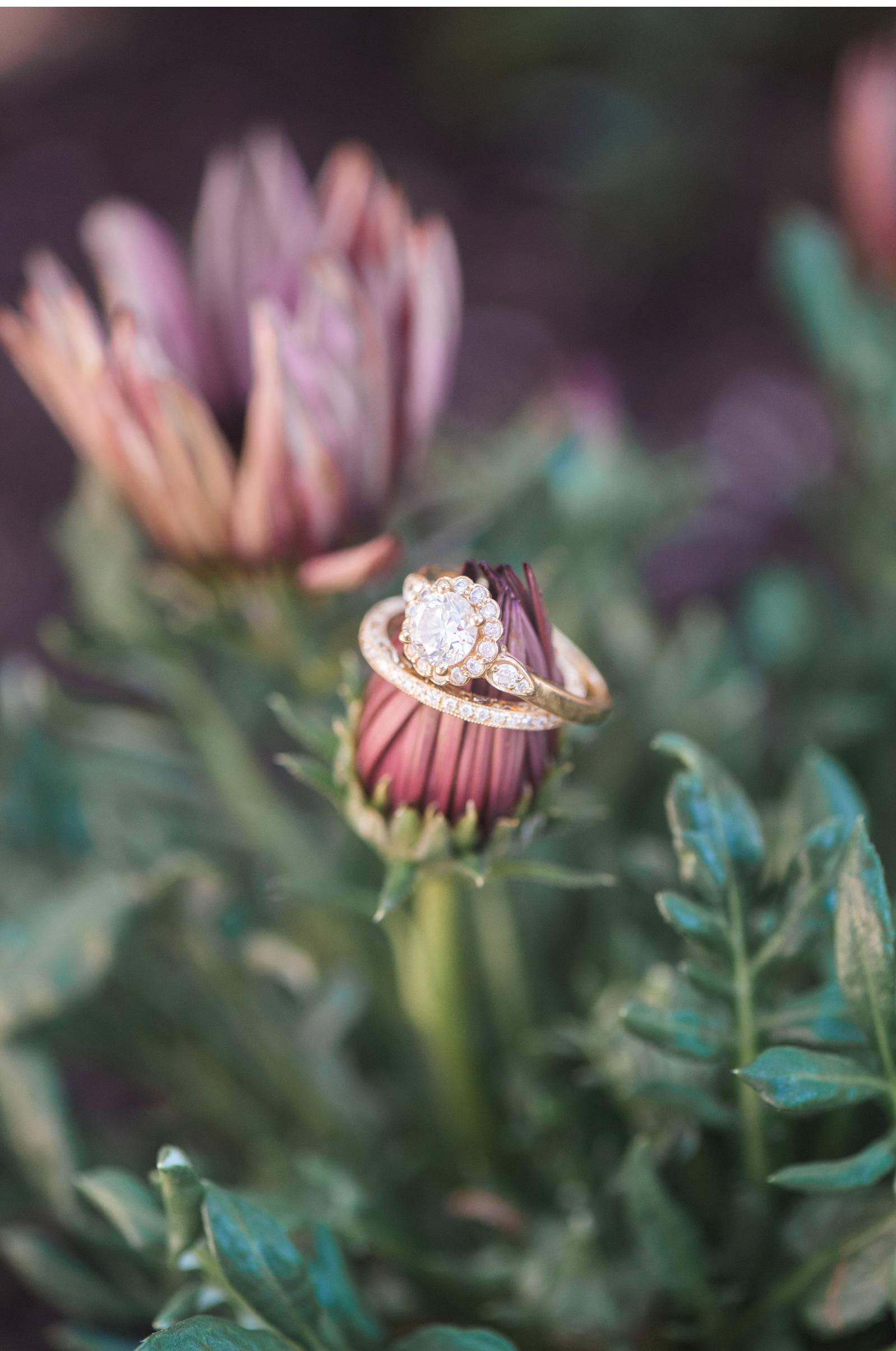 Southern-California-Santa-Barbara-Wedding-Photographer-Natalie-Schutt-Photography_38.jpg