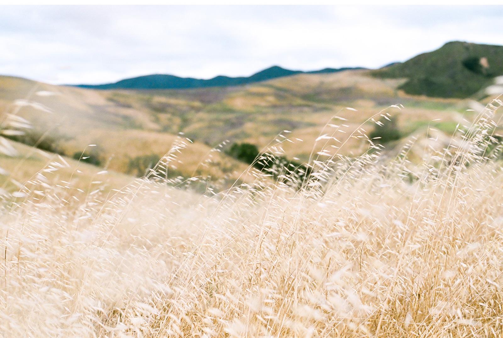 Whispering-Rose-Ranch-Wedding-Natalie-Schutt-Fine-Art-Photography-Style-Me-Pretty_10.jpg