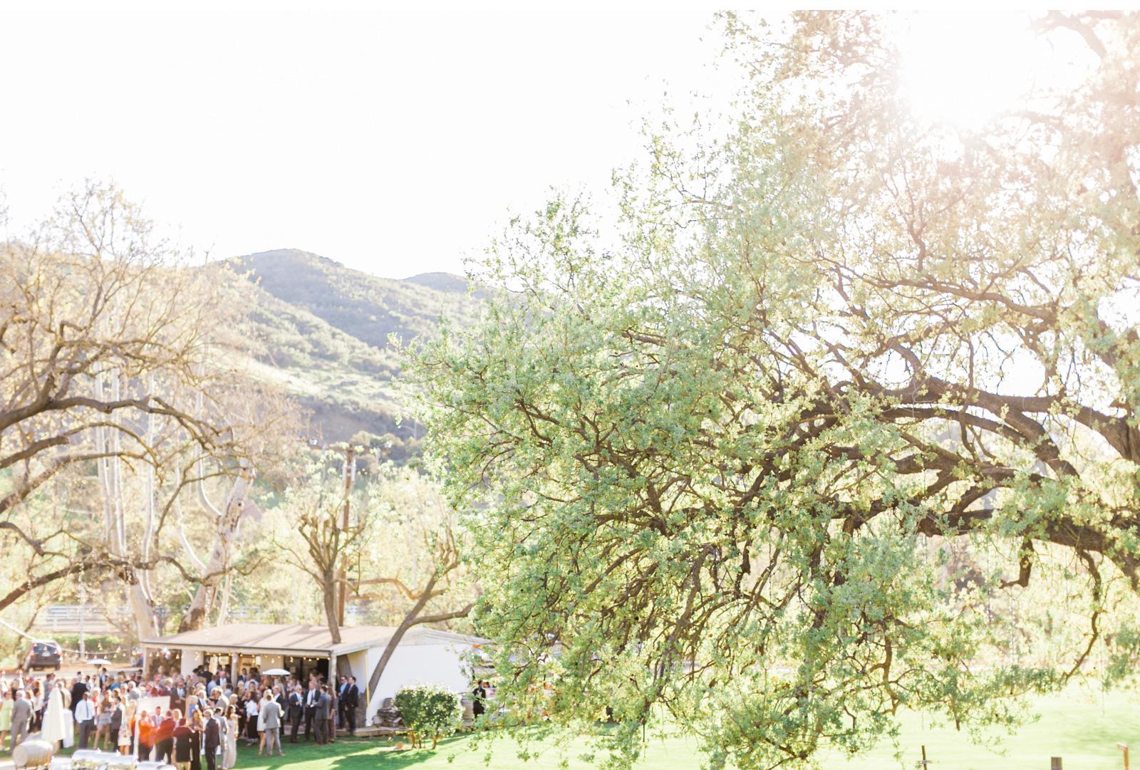 Triunfo-Creek-Malibu-Wedding-Natalie-Schutt-Photography-Couture-Events-Style-Me-Pretty_10.jpg
