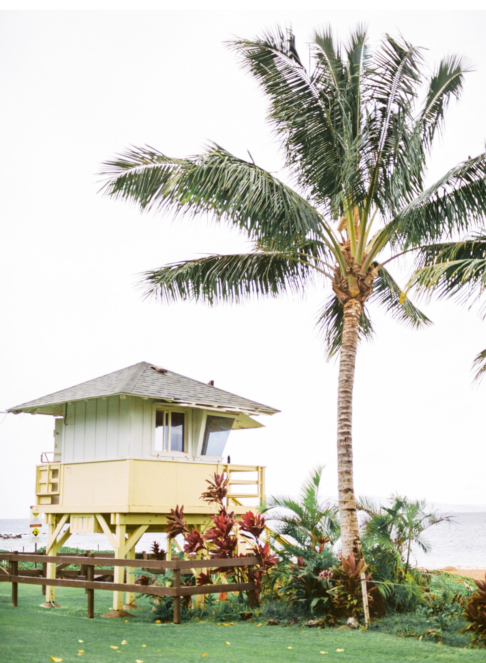 Hawaii-Wedding-Photographer-Natalie-Schutt-Photography_10.jpg