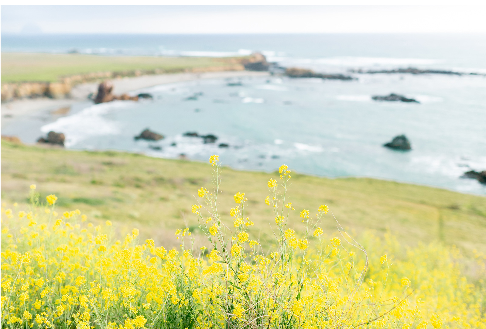 Saddlerock-Ranch-Malibu-Wedding-Natalie-Schutt-Photography-Romantic-Florals-Rolling-Hills-Engagement_20.jpg