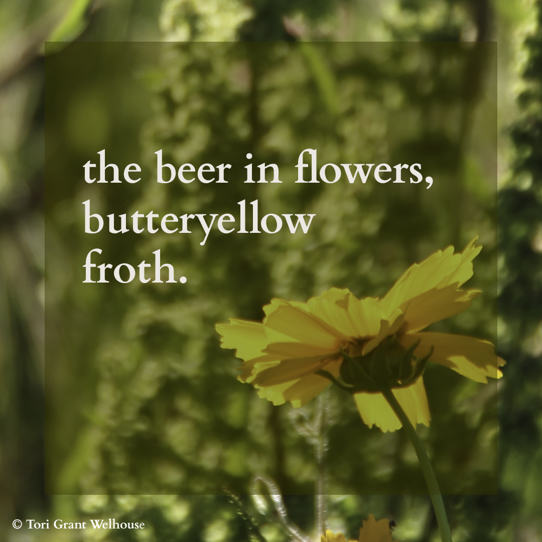 Beer in Flowers.jpg