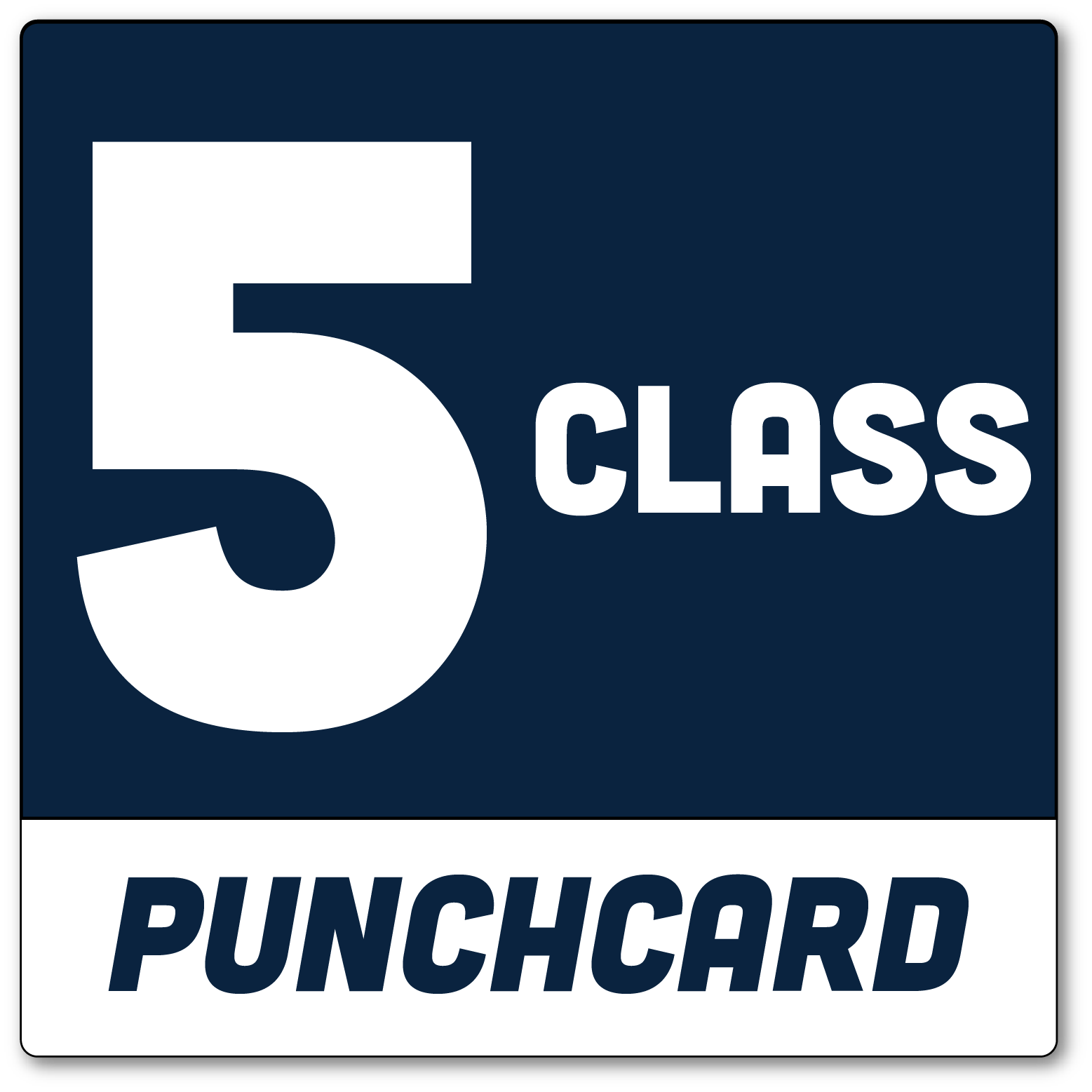 5-class-punchcard.png