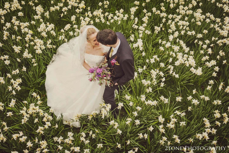 Daffodils at Wynyard Hall