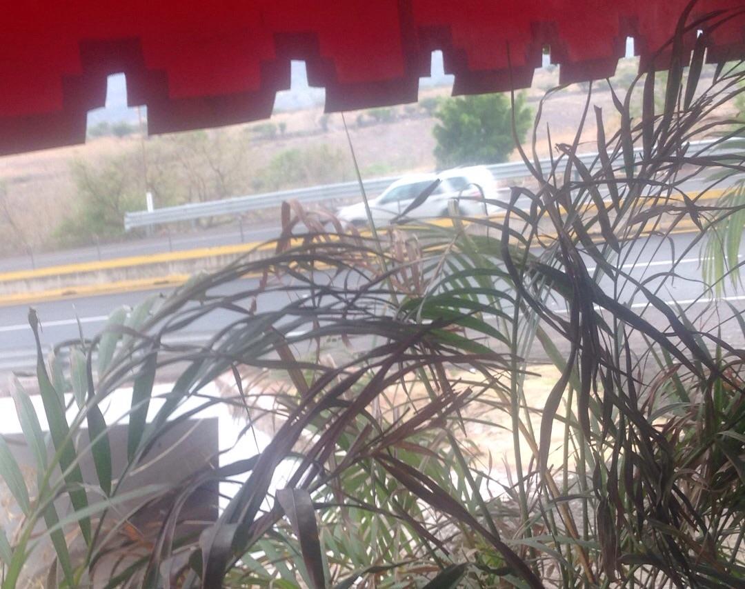 Highway restaurant