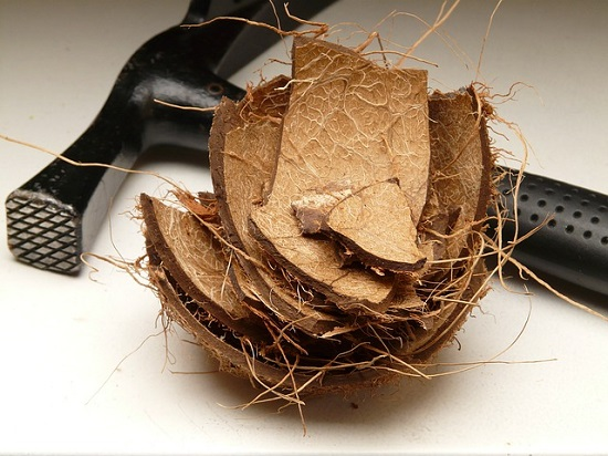 how to open a coconut - Office Pantry