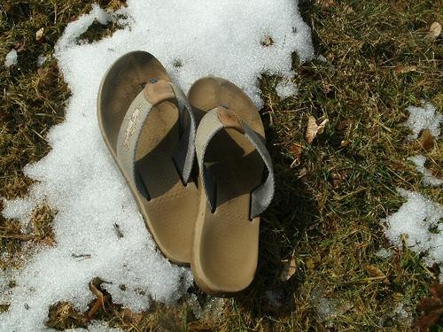 flip flops in winter - office pantry