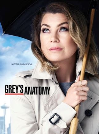 i-poster-delle-due-precedenti-stagioni-di-greys-anatomy-maxw-654.jpg