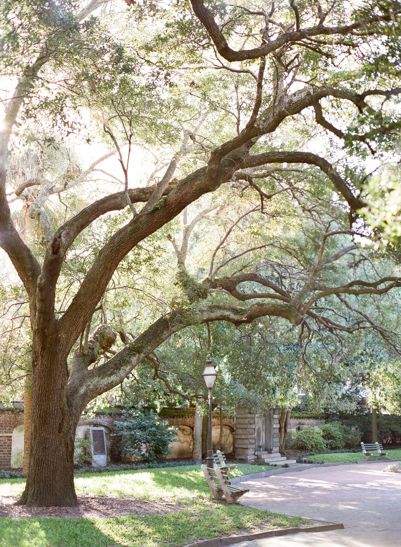 Charleston South Carolina Engagement by The Happy Bloom Fine Art Photography_0002.jpg