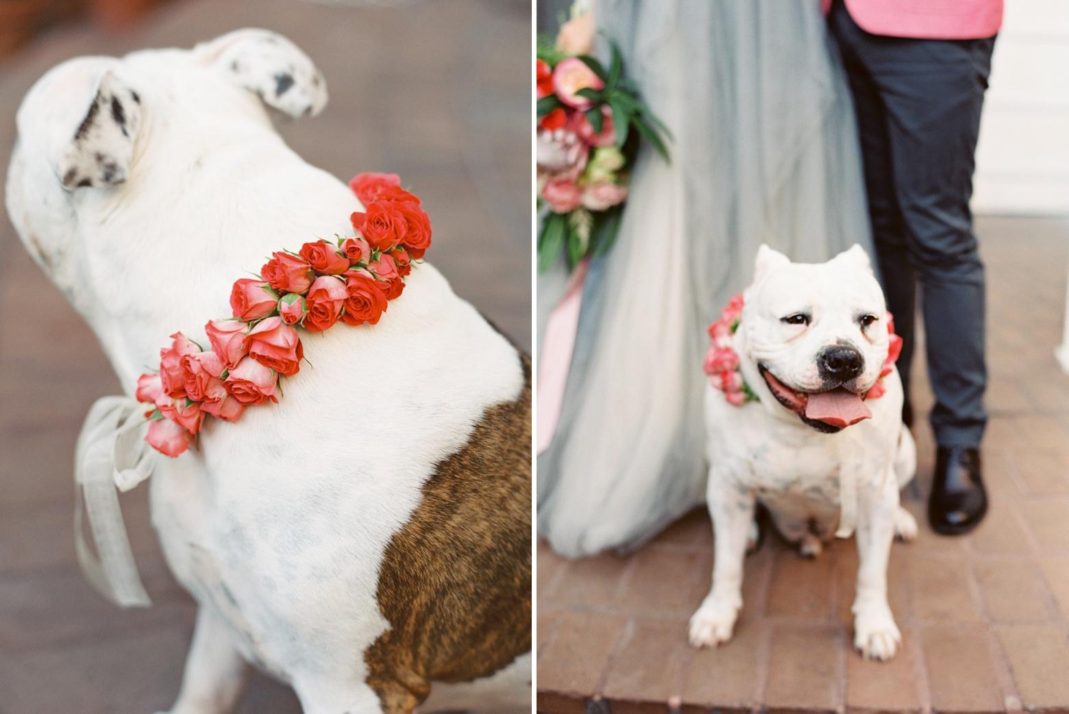 Blush and Grey Wedding by The Happy Bloom_0036.jpg
