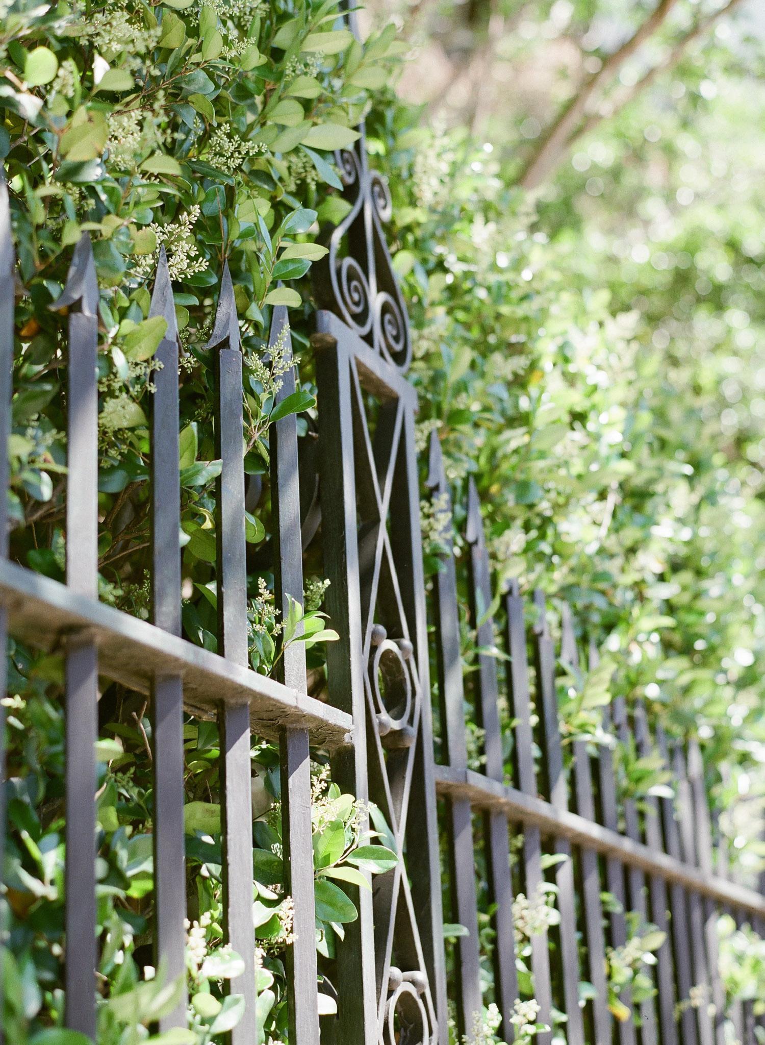 Charleston-Engagement-Downtown-8.jpg