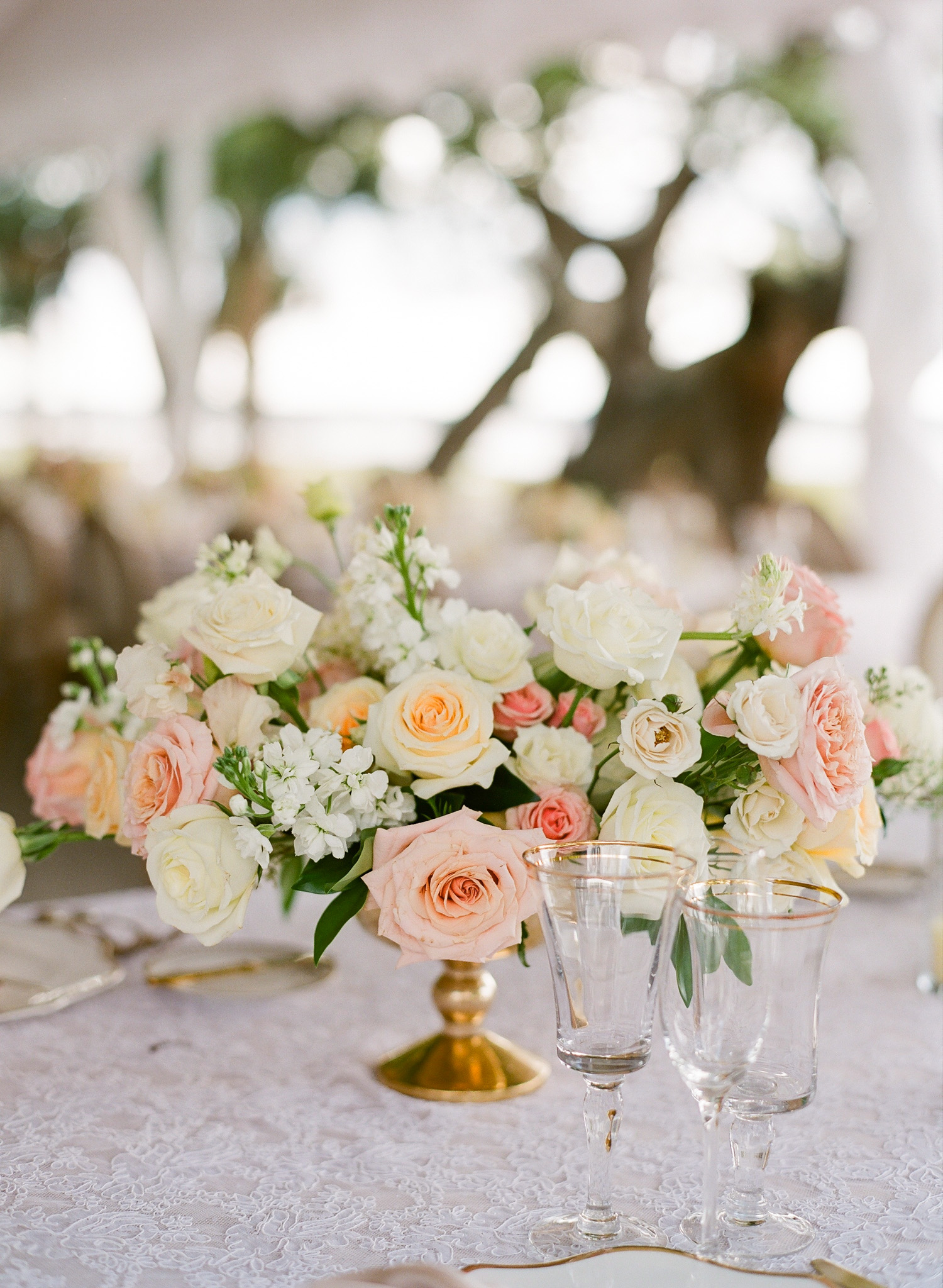 Charleston-Wedding-Lowndes-Grove-89.jpg