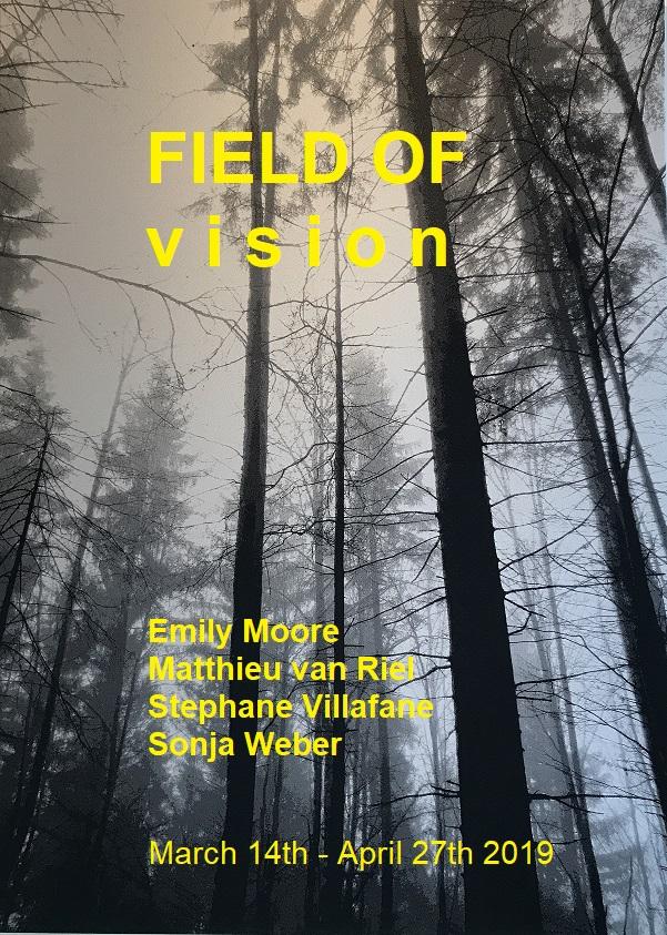 Field of vision .jpg