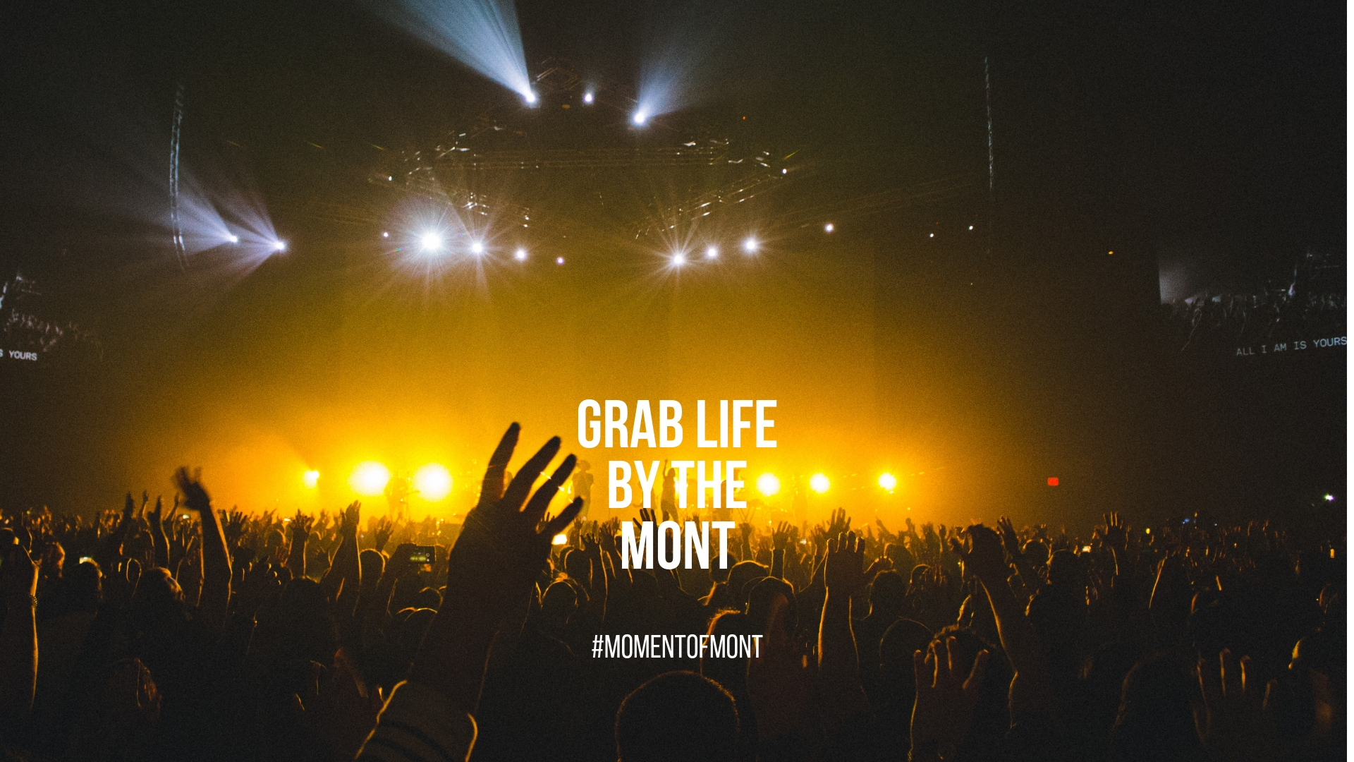 Grab Life by the Mont_Party_homepage.jpg