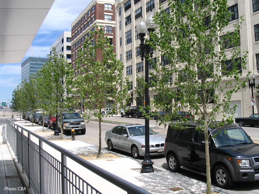 This hotel was built to service the city's new convention center in South Boston. The siting of the hotel provided the opportunity to create a new urban plaza, which is linked to the Convention Center through the use of bold paving patterns and raised planters. A wide band of landscape steps connect Summer Street to the plaza and the hotel's main entrance. New streetscapes were designed along Summer and D Streets.