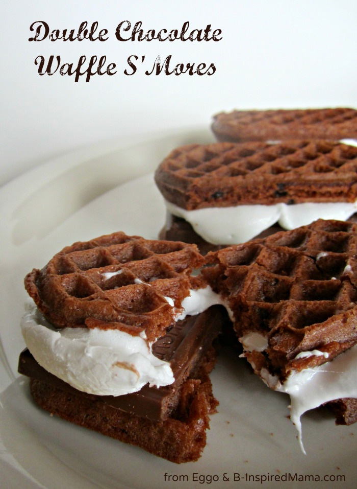 Double Chocolate Waffle S'mores
