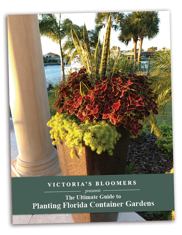 Ultimate Guide to Florida Container Gardening Cover copy 2.png