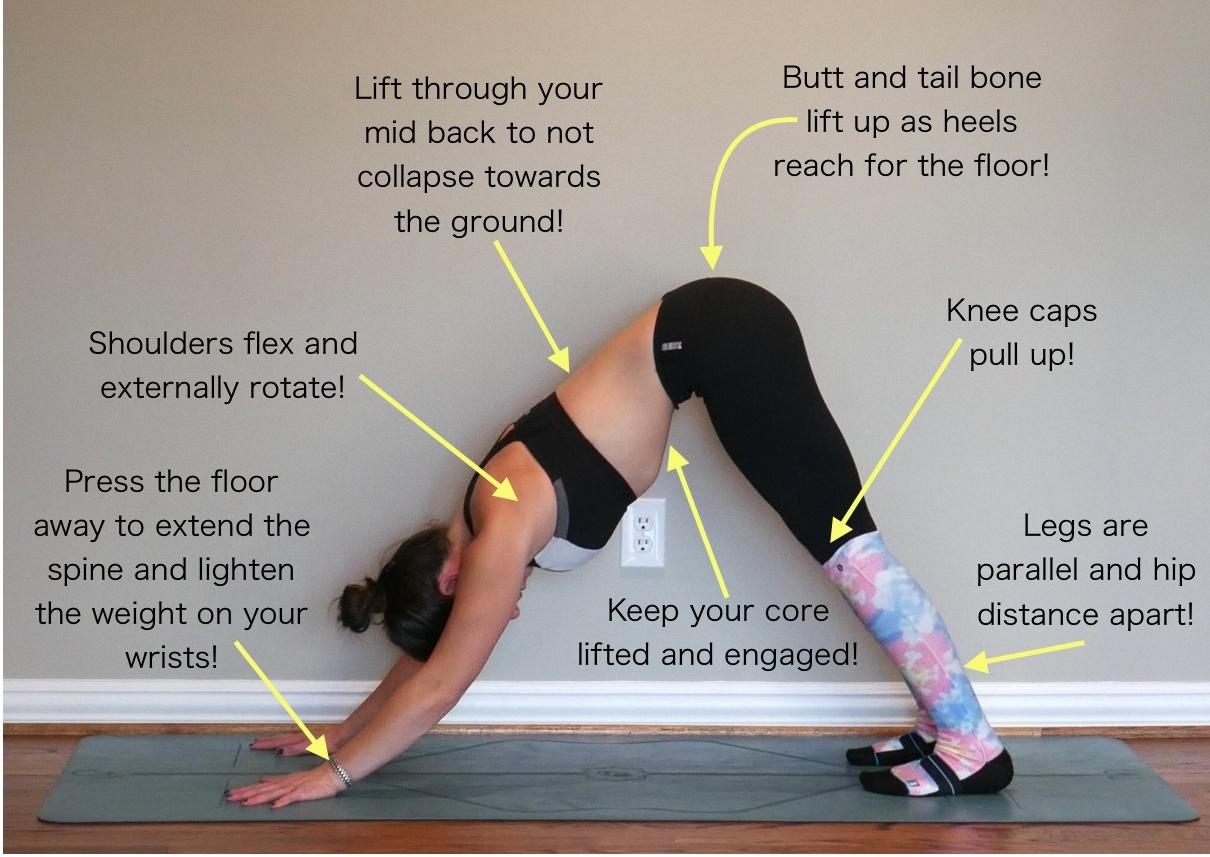Yoga For Lower Back Pain Dani Lieberman