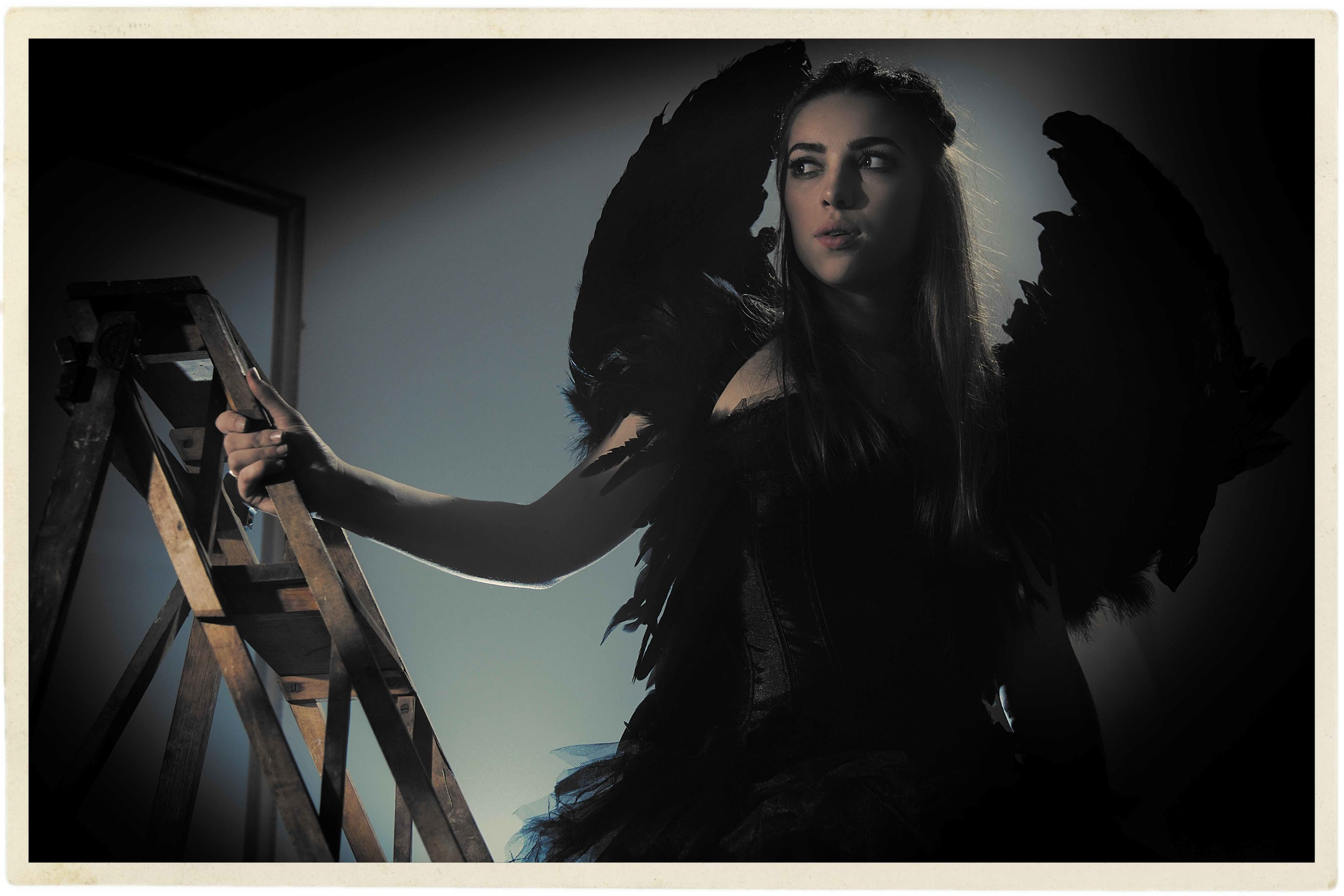 IMG_0824 (1)Black Swan Wet Plate border © Marc Aitken 2015.jpg