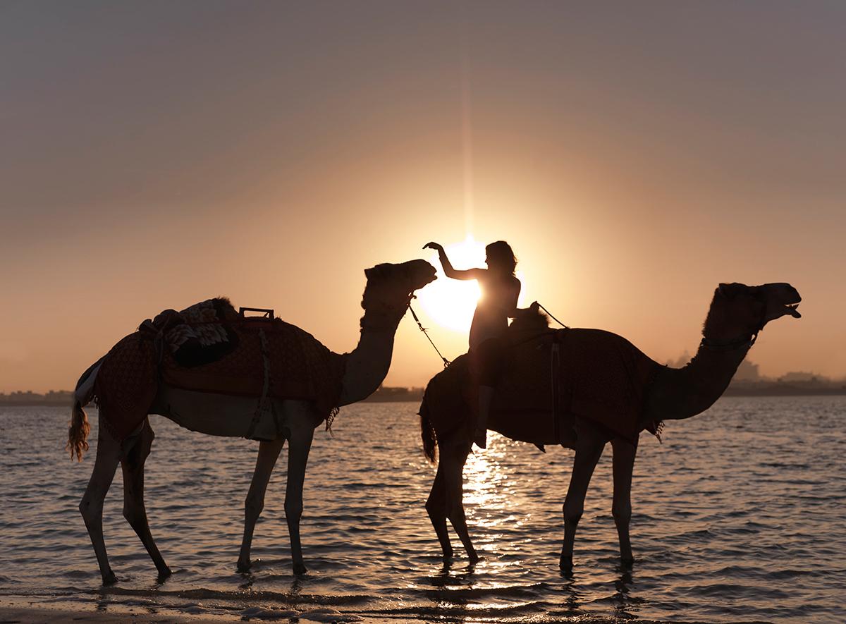 Beach Camels 0078a.jpg