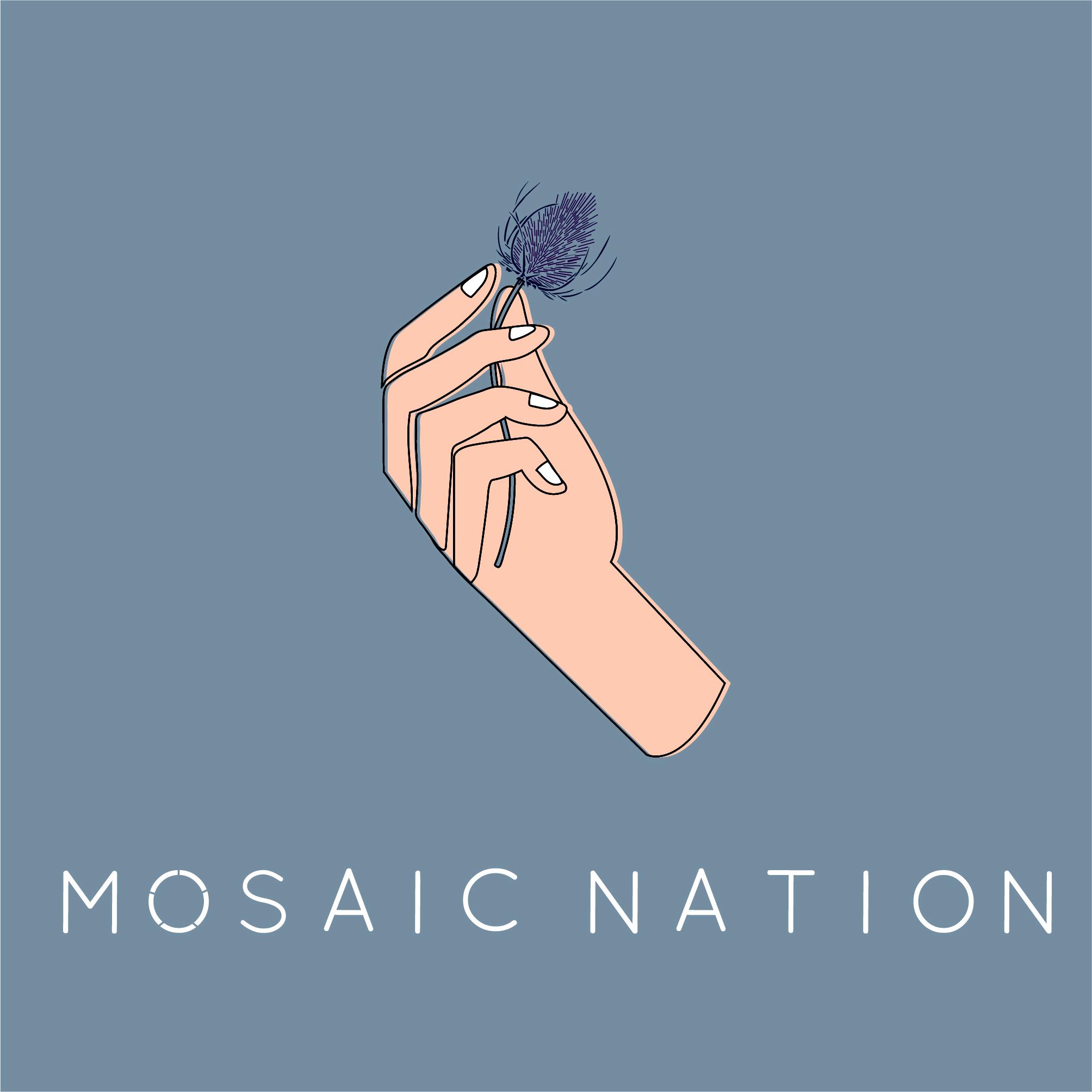 Mosaic Nation Album Art