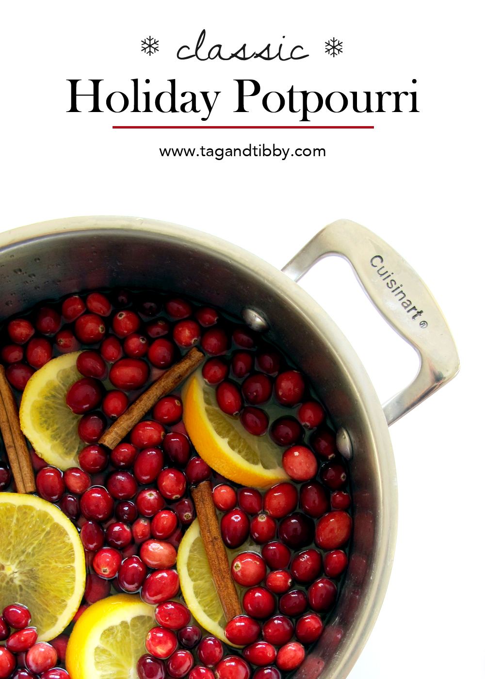 make your home smell like Christmas for under $10! a classic holiday potpourri recipe