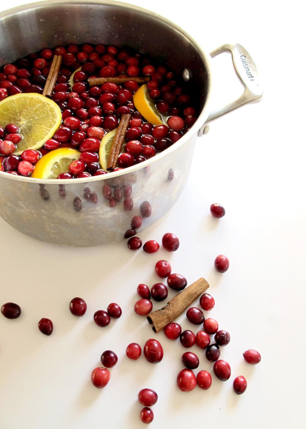 cranberry and citrus potpourri recipe